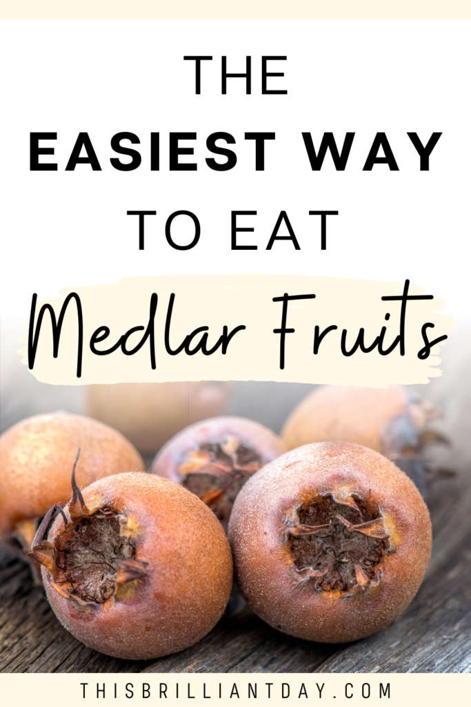 The Easiest Way To Eat Medlar Fruits