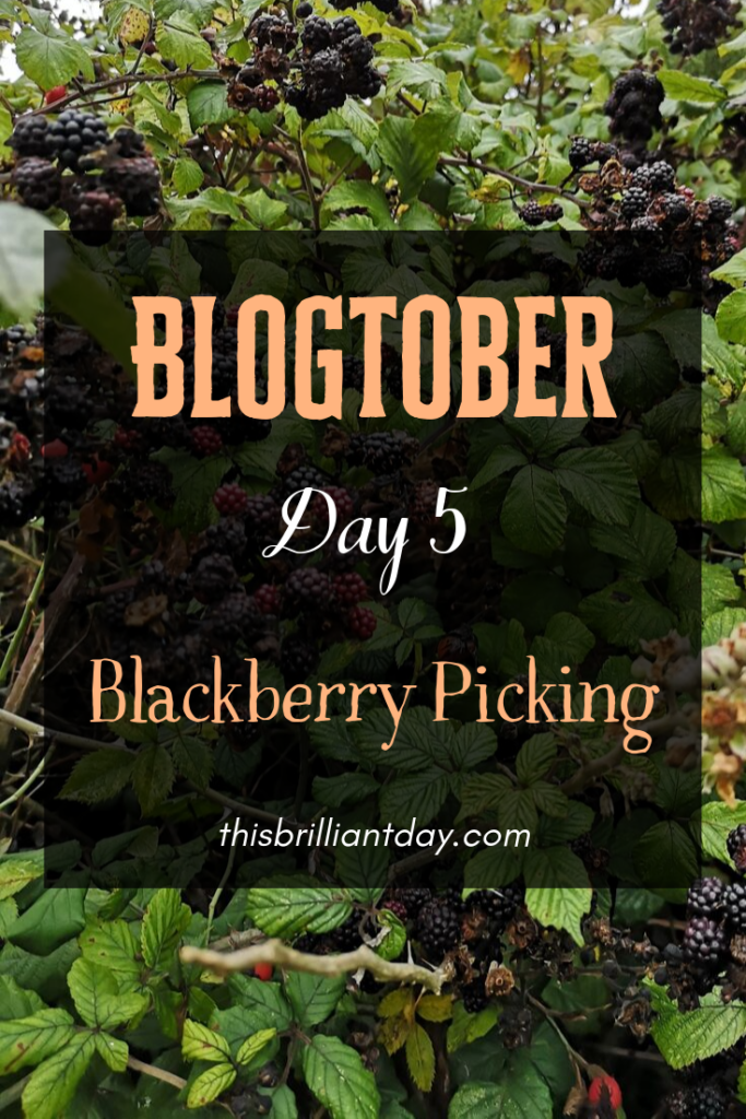 Blogtober Day 5 - Blackberry Picking