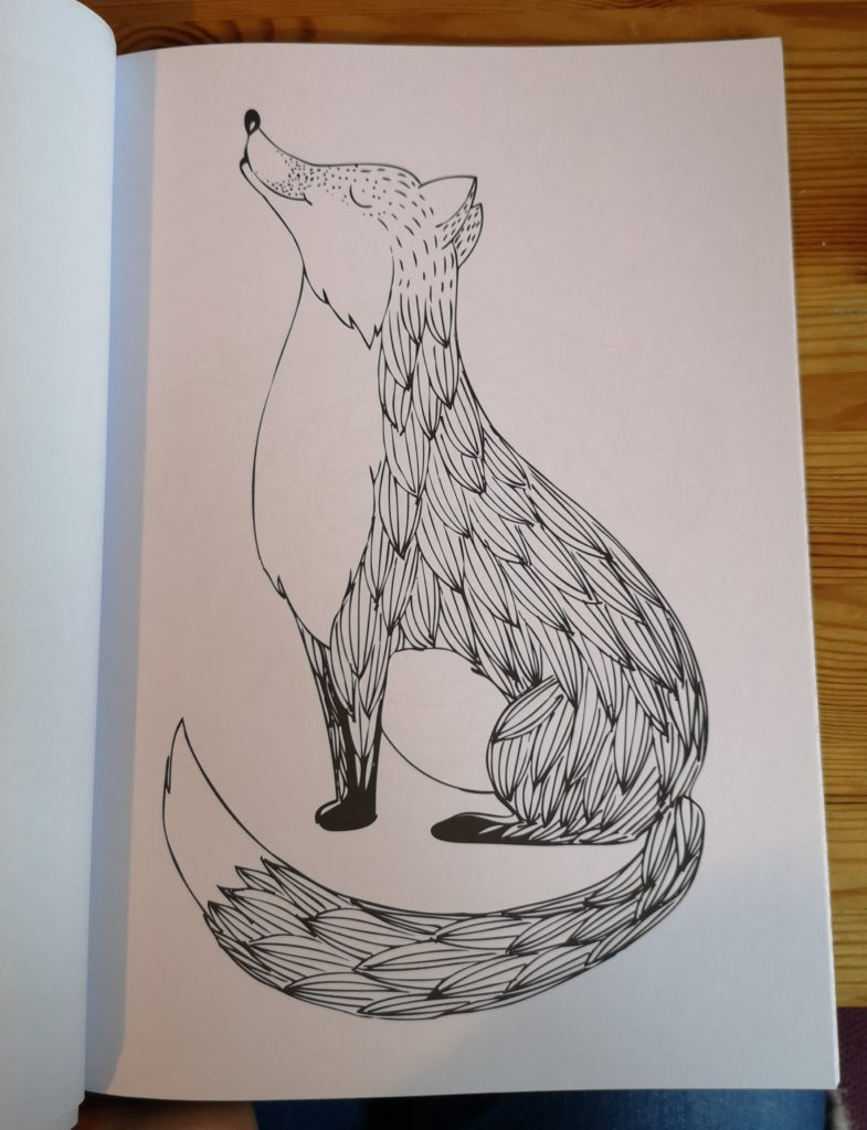 A picture of a fox to colour in
