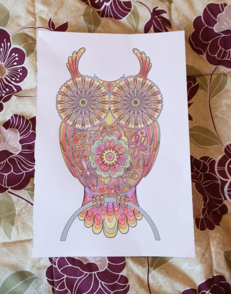 A picture of an owl, coloured in with Autumnal colours