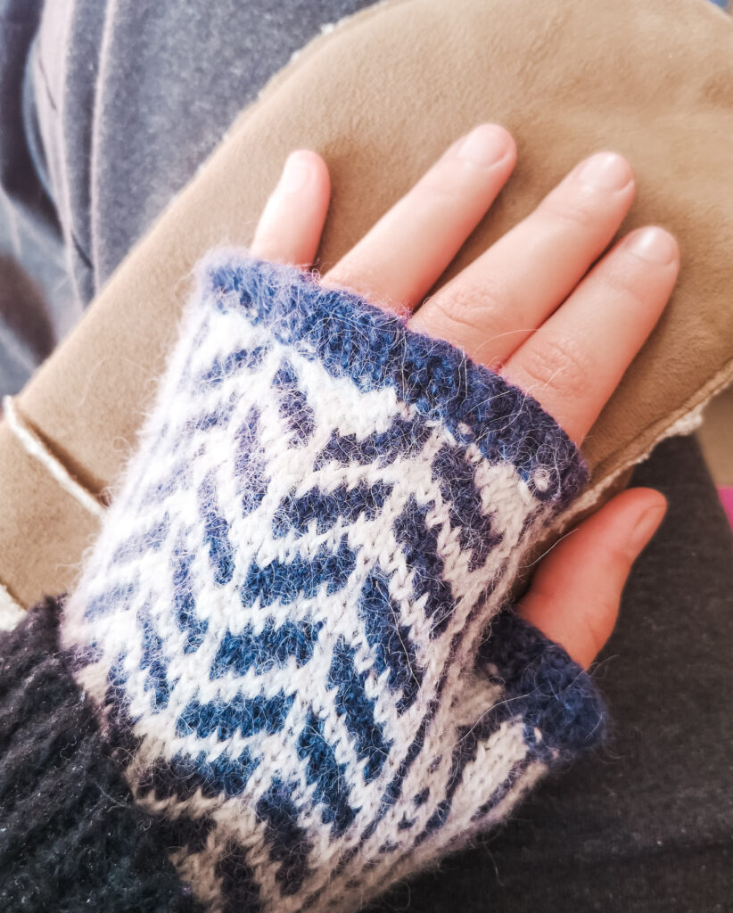 My hand, wearing a blue and white fingerless glove, and resting on a brown mitten.