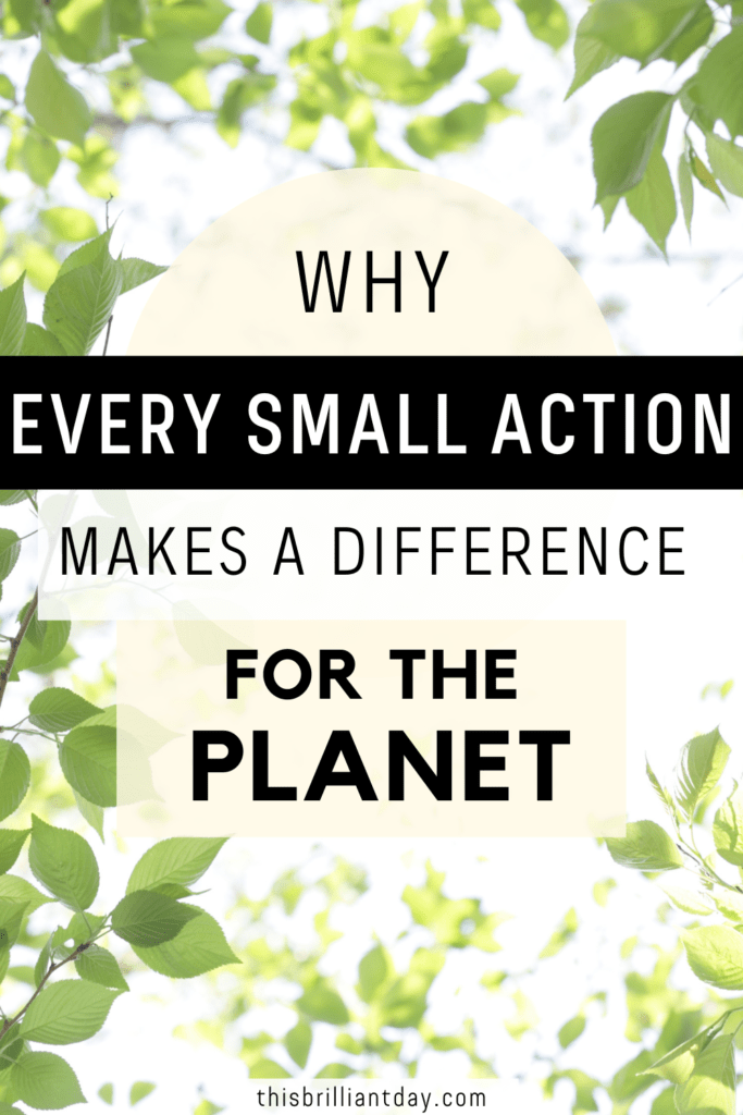 Why Every Small Action Makes A Difference For The Planet